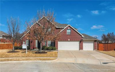 Single Family Home For Sale: 12200 Shale Drive