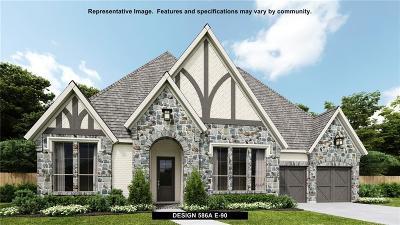 Prosper Single Family Home For Sale: 720 Star Meadow Drive