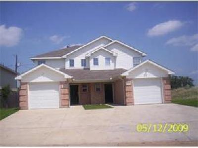 Azle Multi Family Home For Sale: 1333 Village Garden Drive