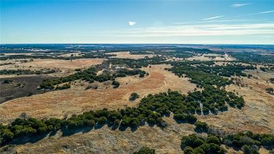 Somervell County Single Family Home For Sale: 4690a County Road 2011