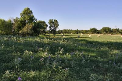 Fort Worth Farm & Ranch For Sale: 0000 Goforth