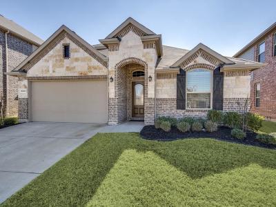 Prosper Single Family Home For Sale: 16600 Amistad Avenue