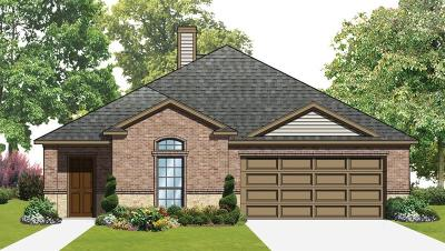 Single Family Home For Sale: 809 Bluebird Way