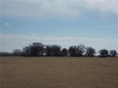 Granbury Farm & Ranch For Sale: 1134 Mambrino Highway