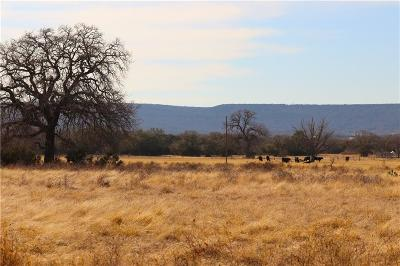 Santo Farm & Ranch Active Contingent: 458 #2 New Hope