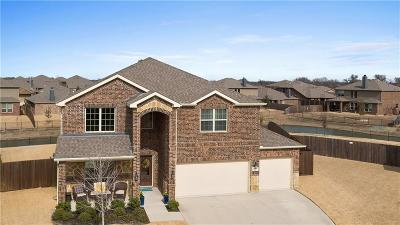 Prosper Single Family Home For Sale: 5700 Salisbury Drive