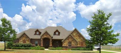 Decatur Single Family Home For Sale: 133 Mesquite Drive