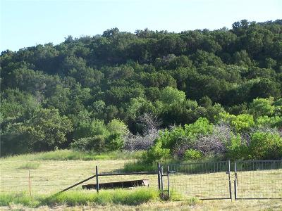 Palo Pinto Farm & Ranch For Sale: Fm Rd 1148