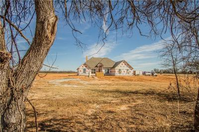 Weatherford Single Family Home For Sale: 919 Friendship Road