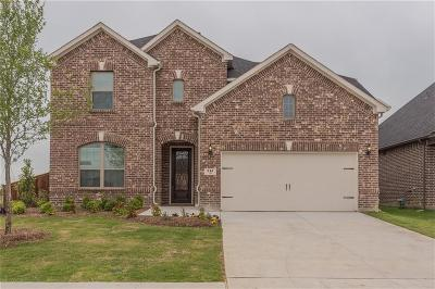 Mckinney Single Family Home For Sale: 216 Village Creek Drive
