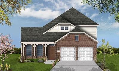 Single Family Home For Sale: 6201 Whiskerbrush Boulevard