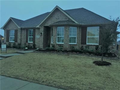 Rockwall Single Family Home For Sale: 2907 Panhandle Drive