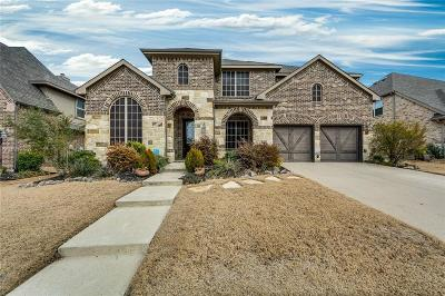 Frisco Single Family Home For Sale: 10828 Panorama Drive