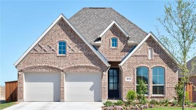 Mckinney Single Family Home For Sale: 1013 Hubbard Creek Trail