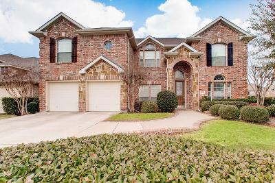 Little Elm Single Family Home For Sale: 2528 Heatherdale Drive
