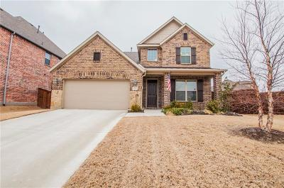 Mckinney Single Family Home For Sale: 700 Llano Falls Drive
