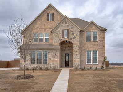 Prosper Single Family Home For Sale: 1221 Castle Drive