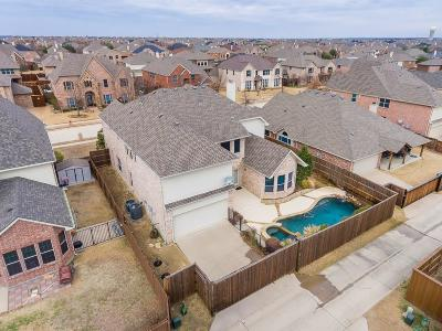 Frisco Single Family Home For Sale: 1131 Elk Mound Drive