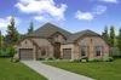 Single Family Home For Sale: 780 Elm Park Drive