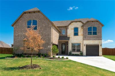 Little Elm Single Family Home For Sale: 13700 Vallanca Court