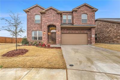 Dorado Ranch Single Family Home For Sale: 11205 Dorado Vista Trail