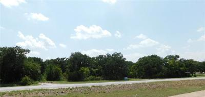 Parker County Commercial Lots & Land For Sale: 00 E Hwy 199