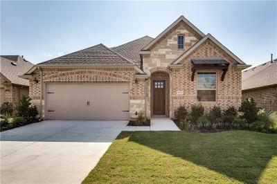 Little Elm Single Family Home For Sale: 9716 Denali Drive