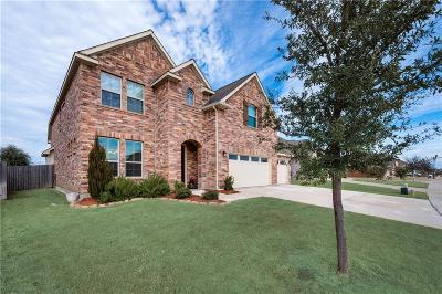Little Elm Single Family Home For Sale: 3029 Lakefield Drive