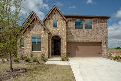 McKinney Single Family Home For Sale: 6516 Dynamite Drive