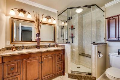 Plano Single Family Home For Sale: 2628 Cedar Elm Lane