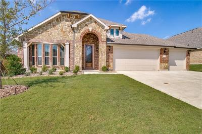 Collin County Single Family Home For Sale: 1718 Sherwood Drive