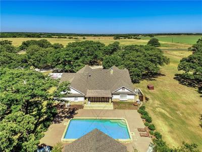 Pilot Point Single Family Home For Sale: 9366 Fm 2931