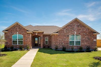 Glenn Heights Single Family Home For Sale: 604 Roaring Springs Drive