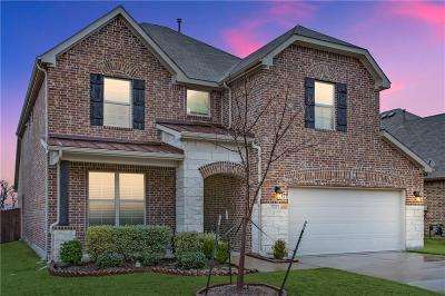 Little Elm Single Family Home For Sale: 632 Sundrop Drive