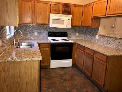 Dallas Condo For Sale: 10500 Lake June Road #6B