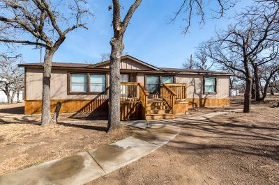 Bridgeport Single Family Home For Sale: 540 Hunter Trail