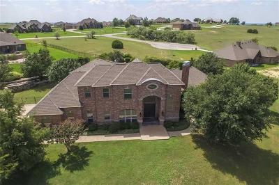 Weatherford Single Family Home For Sale: 119 Laser Lane