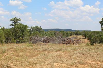 Palo Pinto County Farm & Ranch For Sale: 0029 Brown Road