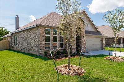 Azle Single Family Home For Sale: 520 Hidden Springs Trail