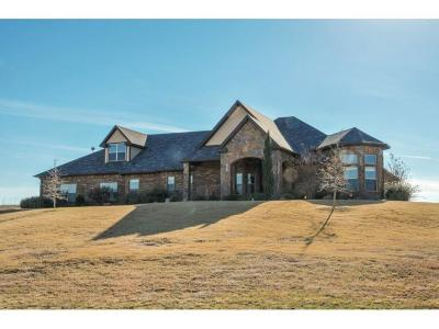 Weatherford Single Family Home Active Option Contract: 232 Pinnacle Peak Lane