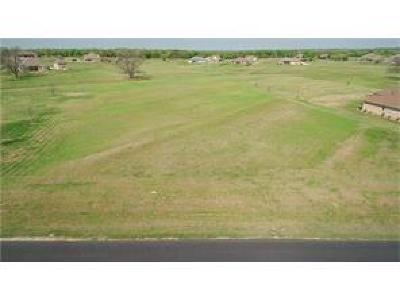Hood County Residential Lots & Land For Sale: 1401 E Scandinavian Court