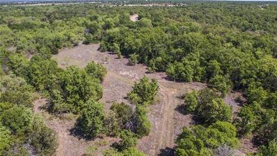 Palo Pinto Farm & Ranch For Sale: 0026 N Lakeview Drive