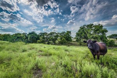 Midlothian Farm & Ranch For Sale: Tbd Fm 875