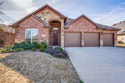 Grand Prairie Single Family Home For Sale: 7651 Watercrest Lane
