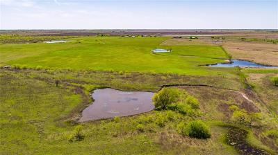 Coolidge, Mexia, Mount Calm Farm & Ranch For Sale: Tbd Highway 171