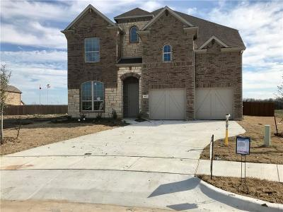 Grand Prairie Single Family Home For Sale: 417 Burberry Drive