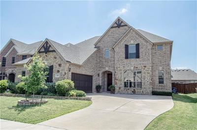 Rockwall Single Family Home For Sale: 203 Chatfield Drive