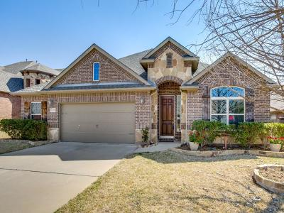 Single Family Home For Sale: 12840 Homestretch Drive
