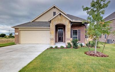 Fort Worth Single Family Home For Sale: 6929 Talon Bluff Drive