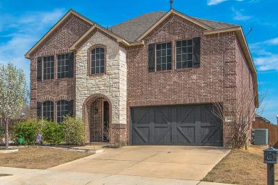 Denton Single Family Home For Sale: 3201 Evening Wind Road